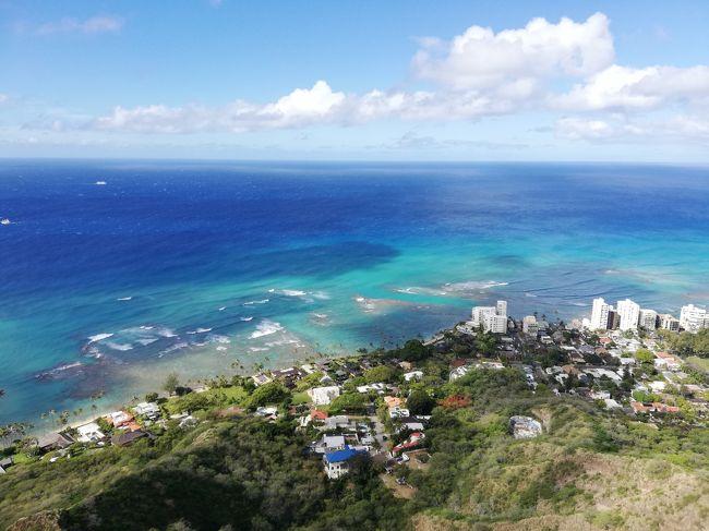 28年ぶりのハワイへ 気晴らしに<br />昨年、妻を亡くし、一人で旅行に行ってもつまらないと思っていたが、<br />ハワイ在住の兄から気晴らしに来ればと誘われ<br />一人息子と男同士の旅へ<br />3月4日月曜日28年ぶりにハワイへ<br />1日目ユナイテッド航空<br />ラウンジでウーロンハイ手巻き寿司を食べ出発を待つ<br />19時成田発、6時45分ホノルル着<br />入国審査もすんなり問題なく済<br />ハワイ在住の兄を待つ<br />渋滞で遅れる連絡あり、30分位してから到着。<br />ホテルチェックインまで時間があるので、ワイキキビーチマリオットに荷物を置き、オアフ島ドライブへハナウマ湾は既に一杯で入れず、<br />途中ラビットアイランドへ立ち寄り、ノースショアを目指す途中、ガーリックシュリンプで有名な KAHUKU  PRAWNS ROMYS で昼食。<br />あまりのエビの多さに驚き、見ただけで腹一杯になる感じです。これを現地在住の兄と嫁と姪は軽く完食。自分と息子は二人で一つで十分でした。途中海亀が見えるWAIMEA BAY とWAIALUA  BAY に立ち寄りしたが、残念ながら海亀を見ることができなかった。<br />その後ドールプランテーションへ果肉の入ったパイナップルソフトクリームは最高に旨かった。<br />道中は時差ボケで眠いが中途半端に寝てしまうと後が辛いので、ムリムリ起きてました。<br />ホテルに戻りチェックインをしてそのまま夕食へ肉が食べたかったので兄オススメの韓国焼き肉へ<br />副菜が一杯出て、豚肉も牛肉も旨かったです。<br />ホテルまで送ってもらい、8時位に熟睡。<br />月曜日を2日過ごした気分です。<br />10時間以上寝てしまった。<br />自分は朝7時に起きたが息子は5時半に起き、散歩をしたらしいが、暗く寒く日が出る前に散歩終了したらしい。<br />2日目朝コンシェルジュにホエールウォッチングのツアー予約。その後<br />昨日自分の息子が兄にリクエストしてPOKE を食べに、地元で人気の小さな店ONO SEAFOOD へ二種類のPokeを選び自分は醤油味とわさび味にした。一番人気は醤油とスパイシー<br />姪と息子がチョイス<br />まじで旨かった。さすが在住者<br />その後、夜景で有名なタンタラスの丘へ<br />昼の方が素晴らしいと兄が言うので<br />てっぺんの駐車場へ<br />まじで本当に素晴らしい眺望。最高でした。<br />それからアラモアナのカフェでお茶<br />息子のリクエストでアサイーデザート<br />これはいける<br />味の説明は難しくなんと言って良いか?<br />でも旨かった<br />兄と別れ、オススメのアラモアナビーチのマジックアイランドへ<br />海側からワイキキのホテルを見る眺望は素晴らしい<br />足を運んで良かった。<br />内海のビーチは子供連れにぴったり最高<br />釣りのオプションツアーを頼みにハワイアンジャパンツアーへ<br />ロイヤルハワイアンから山側へ少し入り、3階へ<br />昼飯つきの釣りツアー予約。一人58ドル<br />ワイキキを<br />ブラブラしチートスと食べたら止まらないピスタチオつまみに赤霧島一杯<br />旨し<br />夕食はワイキキビーチマリオットの一階のイタリアンレストランArancinoへ白ワインに始まり9種の前菜<br />定番のピザ<br />あまりに量があり、追加するか迷うが、黒トビコと漁師風パスタを注文<br />締めであっさりパスタを食し旨かった。<br />3日目天気悪い朝から雨模様<br />10時40分ホエールウォッチング(一人95.41ドル)をまつが、さすがハワイタイム11時到着。同じホテルの日本人家族が心配して自分たちに話しかけてきました。お互い安堵してバスへ乗り込みます。<br />30分もかからず到着。<br />雨は止みましたが厚い雲に覆われて出発。<br />ATLANTIS  CRUISES号でいざ出港<br />3階建てのクルーザーで二階で、自分たちで自由にパンにハサミサンドイッチを作り、食べたあと3階でホエールウォッチングの始まりです。<br />兄からイルカは見易いと聞いていたが鯨の姿を何回も見ることができ、ラッキーでした。<br />イルカは見ることができなかった<br />3時前にホテルに戻り<br />まだ夕食まで時間があるので、チートスとオニオンリングをつまみに赤霧島一杯<br />そろそろ日本食が食べたくなって来たので、新しく出来た横丁を見に行ったがあまりそそられるものがなく、うどんのツ