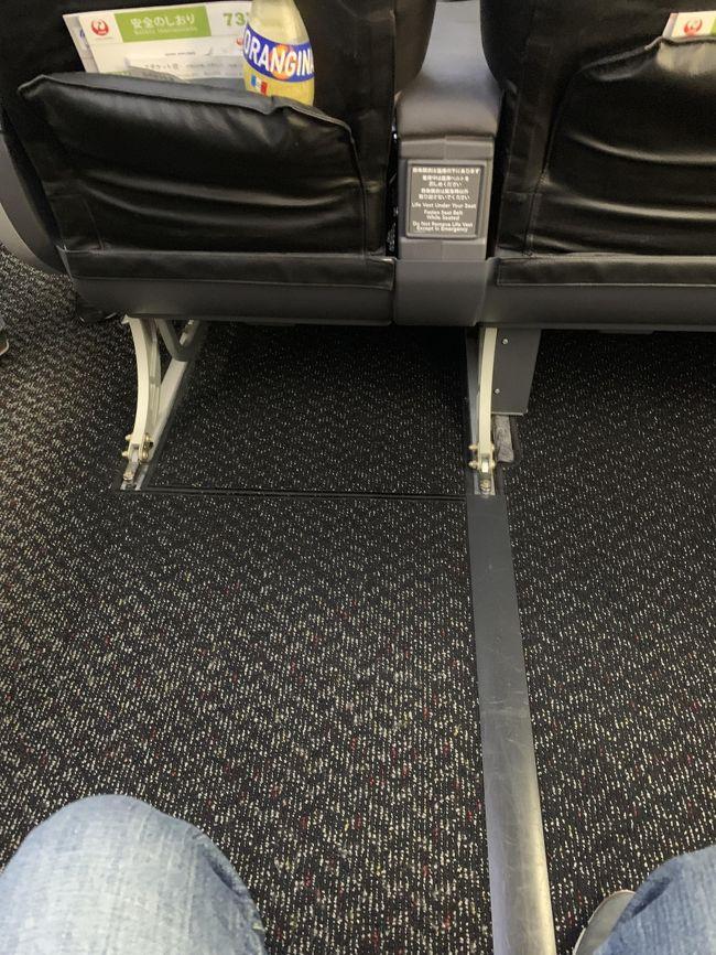 今回は那覇トランジットで石垣島へ渡りました。<br />美奈さん飛行機の座席は事前予約しますか?<br />那覇から石垣島へはJATでボーイング737が飛んでいてもちろんゆっくり行きたければクラスJを選択すると思います。<br />今回はエコノミーの7Dを予約しましたが写真のような足元にスペースがあります。<br />座席の幅は狭い(普通)ですが足元が広いので快適なフライトができます。