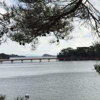 行ってよかった♪仙台・松島ぷらっとひとり旅