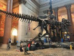 2019 真冬のニューヨークへ行ってきました3〜セントラルパーク・自然史博物館・メトロポリタン美術館・アラジン・タイムズスクエア〜