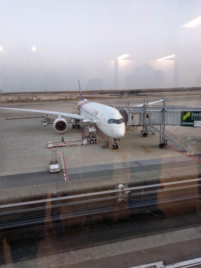 タイ国際航空を利用しました。エコノミークラス利用でしたが快適でした。