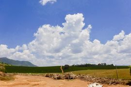 世界中からバイヤーが集まる、最高品質のブラジル珈琲豆を産出する地:Carmo de Minas(ミナスジェライス州/ブラジル)#3