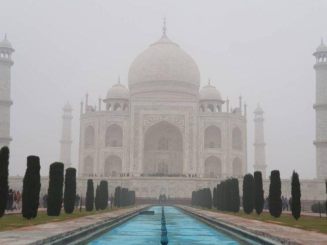 余命いくばくもない?父親に「今度の旅行どこ行きたい?」と尋ねたところ、インドのタージマハルが見たいとの返事。<br />いいじゃないですか、その希望かなえましょう!<br /><br />2/1(金)TG323 バンコク7:00→デリー9:55<br />・インド門、フマユーン廟、ラージガート<br />2/2 (土)<br />・タージマハル<br />2/3(日)TG324 デリー11:10→バンコク16:40