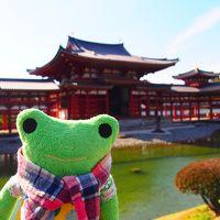 10円玉の平等院鳳凰堂を見たい