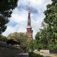 東京の街と神社と、ついでディズニー01