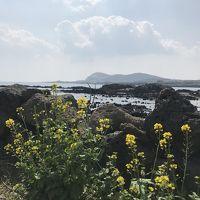 美しの島、春のチェジュ島 ―― 海と美味しいものいろいろ――1日目