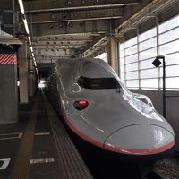 2019年3月関西鉄道旅行2(大回りで大阪へ後篇)