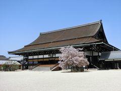 京都('18 花見)