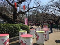 東京散歩*お花見前から大混雑の上野恩賜公園