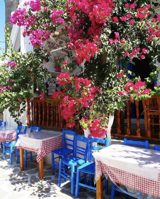 ❥┈┈┈┈❥┈┈┈┈❥┈┈┈┈❥┈┈┈┈❥<br />これまで10数回訪れた大好きなギリシャ。<br />ハイシーズンの8月に旅するのは久しぶり!<br />この年のギリシャは連日熱波警報が発せられ<br />風の強いエーゲ海はともかく、<br />イオニア海側、内陸のアテネは暑すぎました&#9728;︎<br />パロス島から<br />一度イオニア海のザキントスへ渡り、<br />その後ふたたび<br />セリフォス島、シロス等を巡りアテネへと続く旅。<br />島ごとにご紹介します!<br />❥┈┈┈┈❥┈┈┈┈❥┈┈┈┈❥┈┈┈┈❥<br />今回のギリシャ旅行、<br />前半は友人とふたり旅。<br />後半はいつものように、ひとり旅。<br />日程を節約するために、<br />アテネについたその足でピレウス港に向かい、<br />深夜のフェリーでキクラデス諸島にある<br />パロス島へ渡りました。<br />まだ夜も明けきらないような早朝に下船したものの<br />予約していた宿がすぐそばだったので、<br />荷物を預けて軽く朝食を済ませ、<br />パロス等からフェリーで15分ほどの<br />アンティパロス島へ向かいました。<br />パロス島もアンティパロス島も、<br />私にとっては2度目の訪問。<br />ただ、<br />前回は春になる前の3月に訪れたので、<br />冬場のギリシャ特有の<br />連日曇り空、雨、苔むした路地、<br />という観光シーズンとは全く違う姿しか見れませんでした。<br />今回は、<br />まさにこれぞエーゲ海!!と言わんばかりの<br />素晴らしい青空と海、<br />咲き誇るブーゲンビリアが旅人を迎えてくれました。<br />まずは、<br />アンティパロス島からご紹介いたします。<br />❥┈┈┈┈❥┈┈┈┈❥┈┈┈┈❥┈┈┈┈❥