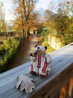 今度こそ癒されたい! バーデン&ザルツブルクひとり旅(7)ガイドブックにも載ってないザルツブルク動物園に行ってみた