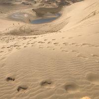 鳥取で砂丘とうさぎ