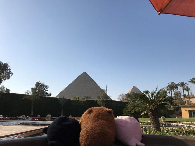 念願のエジプト旅行。しかも『ラムセスDAY』に訪れることができました。旅行前に皆さんの旅行記をたくさん参考にさせていただきましたので、恩返しのつもりでこれからエジプトを訪れる方の少しでもお役に立てればと思います。<br />神殿のお写真や解説などは皆さんの方が上手にされていますので、私は『ラムセスDAY』の雰囲気などお伝えできればと思います。<br /><br />利用ツアー:JTB<br />利用航空会社:成田ードバイ、ドバイーカイロ:エミレーツ航空<br />              エジプト国内:エジプト航空<br />ホテル:コンラッドカイロ、セティアブシンベル、マリオットメナハウスカイロ<br />クルーズ船:ソネスタ・スターゴッデス号<br />