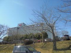 成田街道走行して 成田空港に行きました