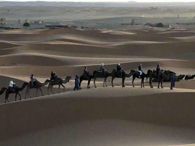 サハラ砂漠でサンライズ