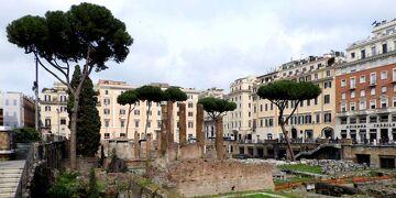 再びローマ。カルボナーラ!