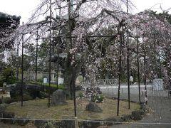 日帰りバス旅行(和歌山マリーナシティ・道成寺)