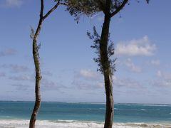 ホノルル旅行 3(ワイマナロビーチとシーライフパーク)