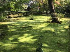 朝観光(7-3) DAY3 京都