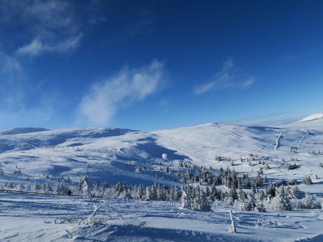 海外ぼっちスキー2018/2019シーズンの第2弾は北欧に行ってきました。<br /><br />スキー日程では1か所目で、ノルウェーのトリシルスキー場。<br /><br />1日目は晴れでもなく、吹雪でもない小雪の微妙な滑走でしたが、2日目が降雪後で低温快晴でしたので楽しいパウダーランができました。<br /><br />■旅程<br />Day1-2   3/2(土)名古屋→羽田→ヒースロー→オスロ(ANA/スカンジナビア航空)<br />Day3     3/3(日)オスロ・ガーデェモン観光+移動<br />Day4     3/4(月)トリシルスキー場<br />Day5     3/5(火)トリシルスキー場+移動(スウェーデンへ)<br />Day6     3/6(水)サレン・ハーグフィレット、リンダヴァランスキー場<br />Day7     3/7(木)サレン・フンドフィレット、タンドゥドーランスキー場+移動(ノルウェーへ)<br />Day8     3/8(金)ハーフィエル(リレハンメル)でスキー+移動 オスロ→コペンハーゲン(スカンジナビア航空)<br />Day9     3/9(土)コペンハーゲン観光+移動 コペンハーゲン→ミュンヘン→羽田(スカンジナビア航空、ANA)<br />Day10    3/10(日)移動 羽田→名古屋(ANA)<br /><br />海外スキーのレポートページがあります。<br />読んでいただければ幸いです。<br />http://soleil1969.com/ski/skitop.html<br />http://soleil1969.com/ski/19nosw/19_try_001.html<br />