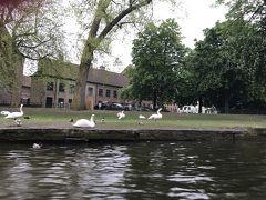 ドイツ・ライン川下りや河畔の町やベネルックス三国の運河・花・名画を楽しむ旅 4-2-1 運河の町ブルージュの前編