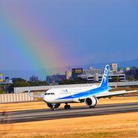 有岡城と飛行機を見に伊丹へ
