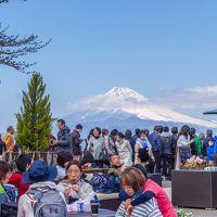 晴天の日は富士山を眺めに〜伊豆の国パノラマパーク〜