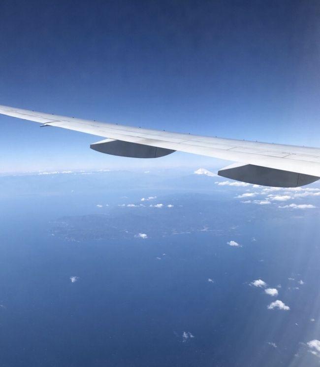 宮古島での3日間のダイビング旅。<br />2日目の夜から4日目(最終日)をご紹介します。