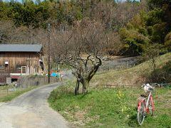 平成31年、春の奈良 石舞台古墳から岡寺へ