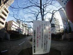 陰陽道 桜 ~2019年04月12日 東京区部  2019.03.20~4月12日金曜日