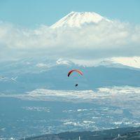 春の伊豆へドライブ 3月の富士山はいいね!