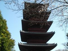 春の池上本門寺