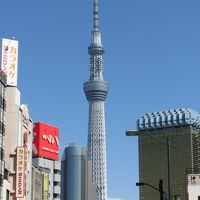 こだまグリーン車で行く東京観光
