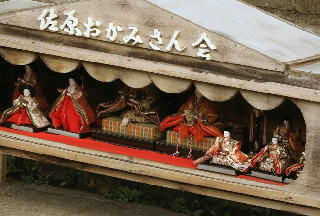 お雛めぐりをしないと春が来ないSZKさんと唐辛子婆。<br />今年は東京駅八重洲口からバスに乗って千葉県の佐原まで<br />お雛さまを見にでかけました。<br /><br />お雛祭りをやっているのは2月9日から3月24日まで。<br />3月9日(土)には「さわら雛舟春祭り」が行われたやうです。<br />「本物の雅楽で平安時代にタイムスリップ!」<br />平安装束のお内裏様、お雛様、五人囃子、官女、稚児たちを乗せた船が<br />小野川を進むそうです。<br /><br />佐原駅のそばの「町並み観光中央案内処」の方々がとっても親切で<br />たすかりました。<br /><br />★Japan お雛さまシリーズ サイトマップ<br />https://4travel.jp/travelogue/11333987<br />