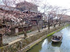 平成最後のお花見④ 近江八幡水郷めぐりと三井寺の桜ライトアップ
