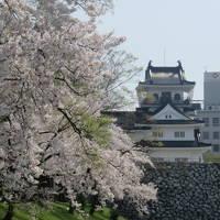 北陸路・飛騨路(12)市電に乗って桜満開の富山城址公園