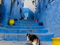 年末年始♡ドバイ・ポルトガル・モロッコDay6