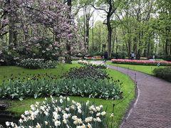 ドイツ・ライン川下りや河畔の町やベネルックス三国の運河・花・名画を楽しむ旅 5-3 雨のキューケンホフ公園は花盛り