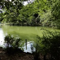 隅田川から井の頭池へ/東京を東西に貫く神田川に沿って歩く/その2