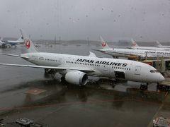 成田空港ラウンジめぐり、JAL機内。 メルボルン到着まで