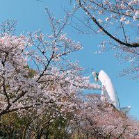 花見に大阪へ①