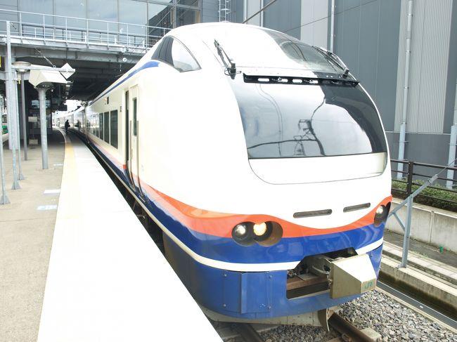 山形に行くには東京から99%新幹線を使います。今回は山形行きのバスでもなく仙台周りでもなく初めて新潟からのバスを使いました。理由は長野からその日のうちに行く必要があったから。平成最後の旅かもしれませんね。