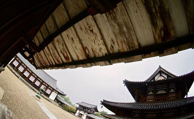 ブラジルに住む私が、わざわざ24時間も掛けて、日本に戻り、少ない時間に、京都ではなく、奈良に30年ぶり来たのは、ここにくる為。<br /><br />奈良公園、東大寺、大仏殿、元林院町見学を完了。<br /><br />翌日は、東京に戻らなくてはいけないのだが、午前中はまだ時間がある。<br /><br />そうだ、奈良の象徴の一つ、世界最古の木造建築物、「法隆寺」に行こう!