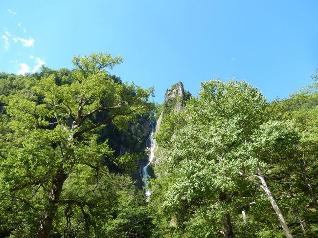 阪急ツアーで北海道に行きました。富良野、阿寒湖、知床などを巡りました。