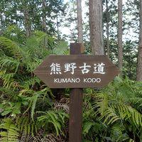 ま・・・まさか第二のて〇みくらぶ?詐欺事件かっ JAL最初で最後のハミングバードディパーチャー・熊野古道・湯の峰温泉・川湯温泉