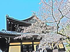 ごはん難民&極寒の夜桜☆京都