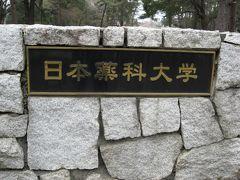 学食訪問ー181 日本薬科大学(伊奈町さくらまつり特別一日公開)