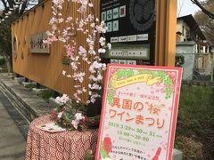 名古屋城の桜2019