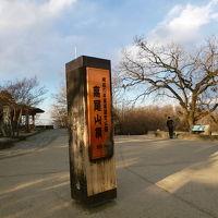 日本語を教えていた青年とモダンパスタ八王子北野店&高尾山 2019/04/02
