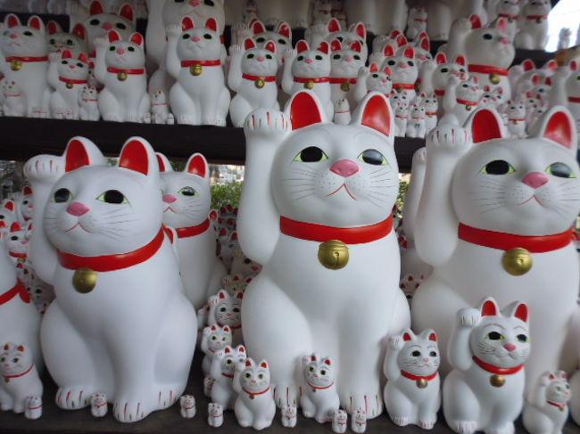 最近は招き猫で有名な豪徳寺あたりを散策です。豪徳寺は井伊家の菩提寺として有名ですが、最近は招き猫でも有名です。豪徳寺の後は松陰神社にも寄って世田谷の中心を歩きます。
